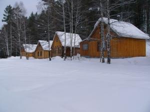 Зимние домики_12